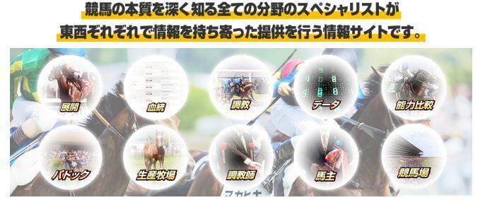 競馬トップチーム_要素