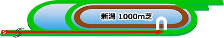 新潟1000m