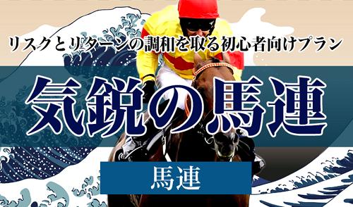 TENKEI(テンケイ)_気鋭の馬連