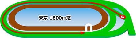 東京芝1800m