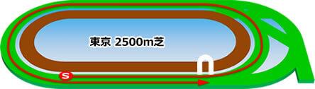 東京競馬場_芝2500m